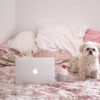 Das Wochenende mit der Internetbekanntschaft